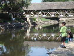 Naperville Riverwalk Bridge